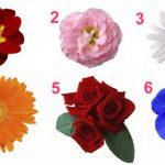 A nőiesség tesztje! A virág, amit választasz sok mindent elárul a személyiségedről
