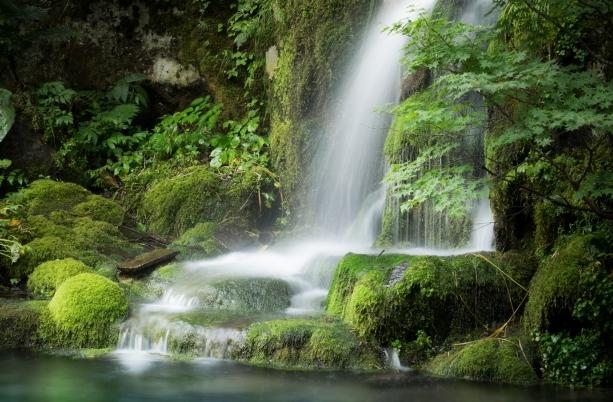 滝 アクア テラリウム