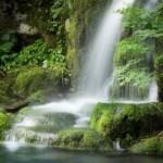 【アクアテラリウム】滝を作るのに必要不可欠!水中ポンプはニッソー!?