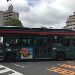 【兵庫】神戸観光におすすめ!シティー・ループ1日乗車券がお得すぎる。バスでお得に楽々神戸観光。