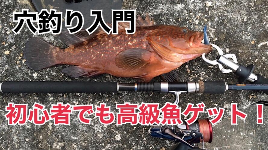 手軽に根魚をゲット!初心者におすすめ穴釣り入門。