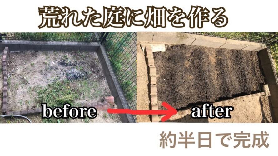 【家庭菜園】庭に半日で畑を作る方法。~畑作りから種まきまで~