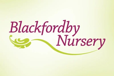 logo and branding design – blackfordby nursery