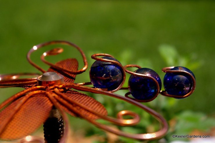 A weathered copper lawn sprinkler that doubles as lawn art in the form of a dragon fly. In its tail are three still polished indigo blue marbles or beads. The background is blurred as the lawn is not the focus but the reflection in the marbles. Upon closer inspection the photographer is revealed in the reflection.