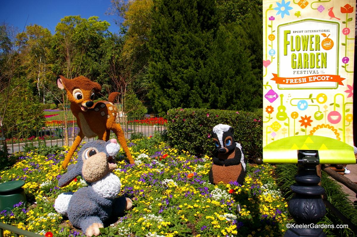 Image result for photos of gardens epcot