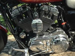 H-D Sportser 1200 Custom - gearbox