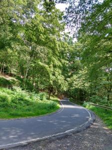 2016-07-moezel-road