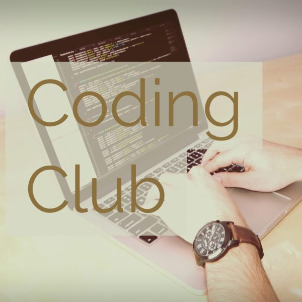 person on laptop doing coding