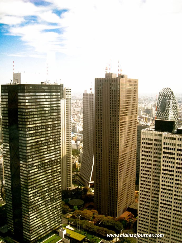 Tokyo's Skyline from Metropolitan Government Offices.