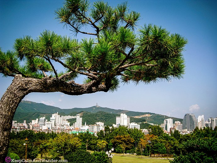 Busan in a day.
