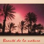 Postcards 28-31