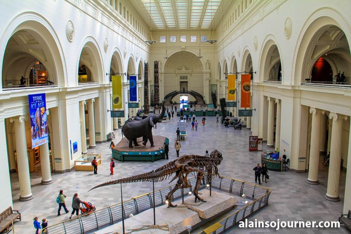 Field Museum Chicago Things To Do 14
