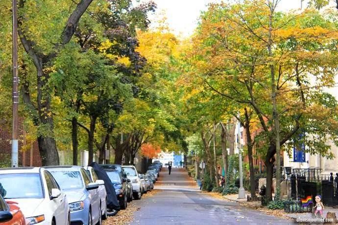free Walking tour in New York City Brookyln Fall Colors