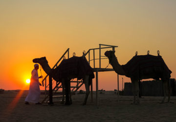 Sunset in the Desert (Dubai, United Arab Emirates).