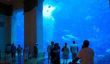 Atlantis Dubai (aka Atlantis The Palm).
