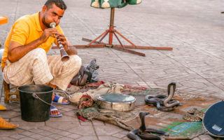 The Snake Charmers of Marrakesh at Place de Jemaa El-Efna (Morocco).
