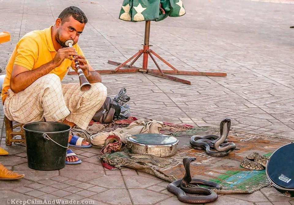 new york wednesday gay Marrakesh