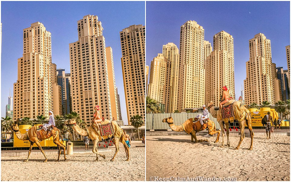 These Photos Show Dubai in a Nutshell / Jumeirah Beach.