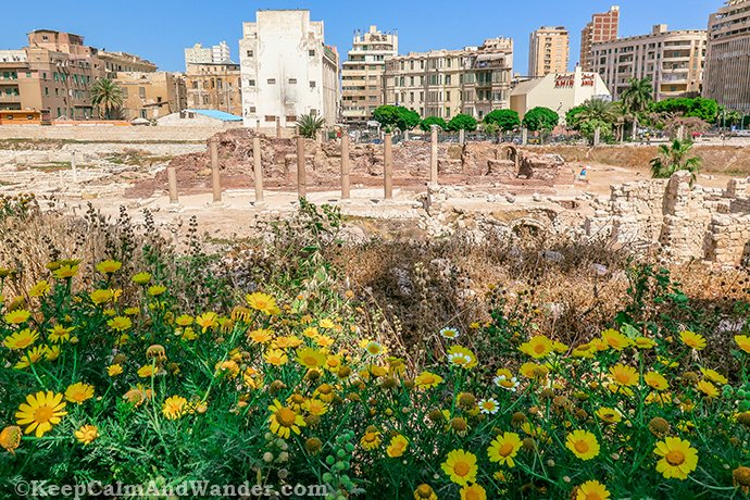 The Roman Amphitheater of Alexandria After the Upgrade (Egypt).