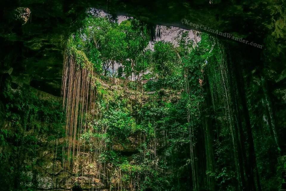 The Wonderful Cenote Ik Kil in Mexico.