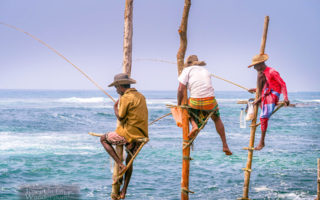 These Fishermen on Stilts in Sri Lanka are Fishing for Money Galle, Sri Lanka).
