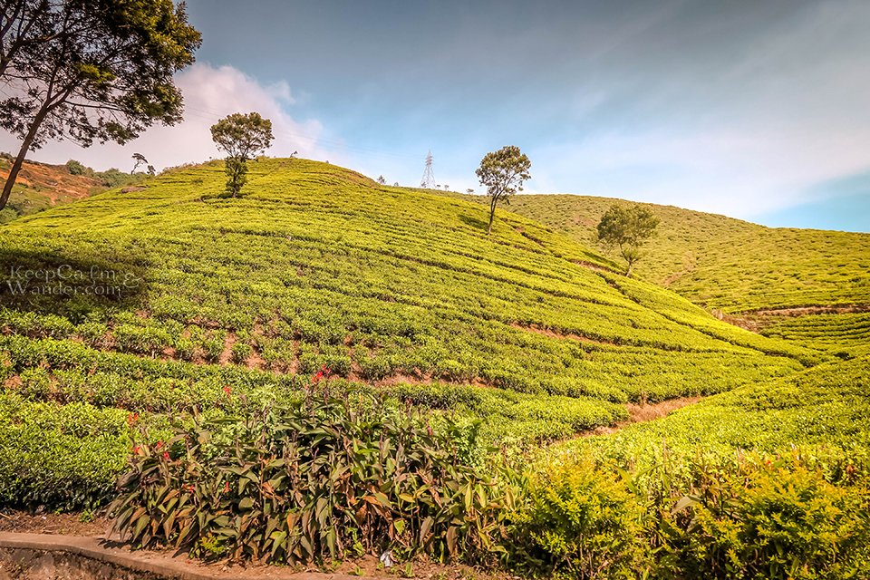 On The Road: The Scenic Drive From Kandy to Nuwara Eliya (Sri Lanka).