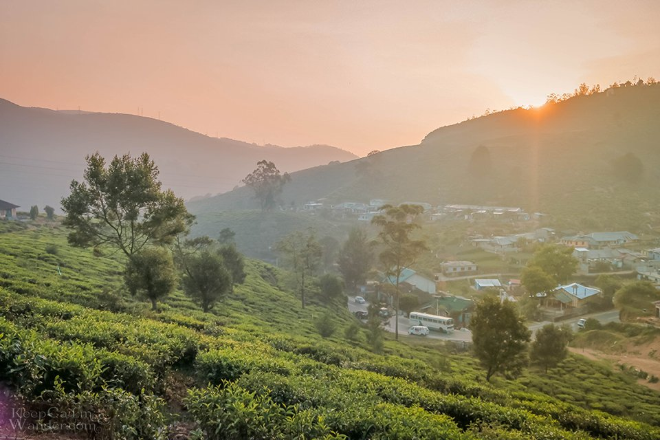 The Stunning Pedro Tea Plantation in Nuwara Eliya (Sri Lanka).