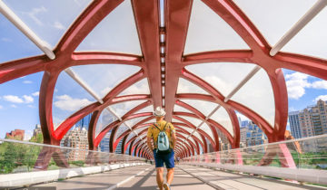 Peace Bridge in Calgary Things to Do