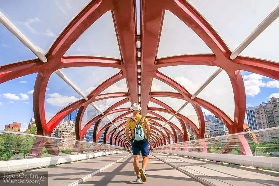 Peace Bridge in Calgary Things to Do