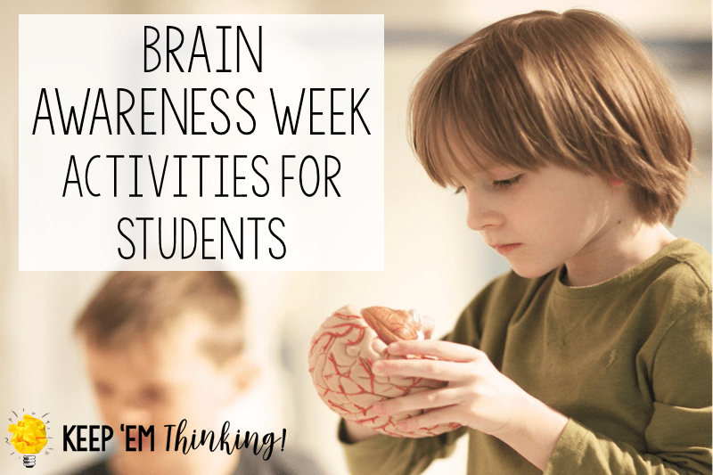 Brain Awareness Activities
