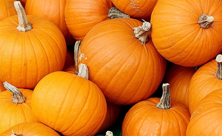 Top 5 Health Benefits of Pumpkin! -Keep Fit Kingdom