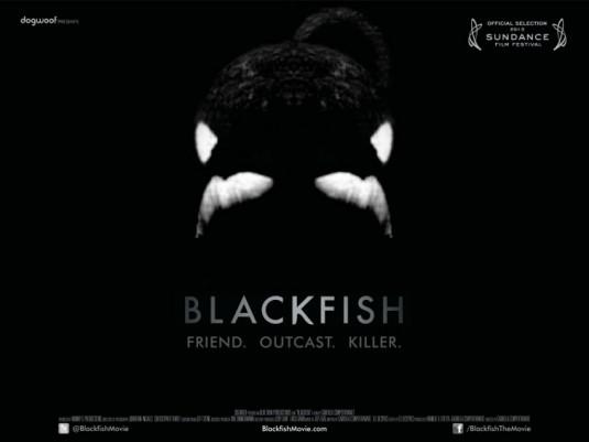 blackfishposter2