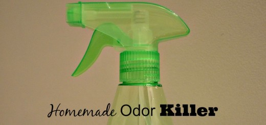 Homemade Odor Killer