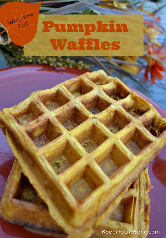Aren't you loving fall? Try these great homemade pumpkin waffles for brunch this weekend.  You are going to LOVE them! #waffles #Wafflerecipe #Breakfast #Fallbreakfast #Breakfastrecipe #Brunchrecipe #pumpkin #pumpkinwaffles #Pumpkinforbreakfast #eggfree #eggfreebreakfast #eggfreefood #eggless #egglessbreakfast #Eggfreewaffles #Egglesswaffles