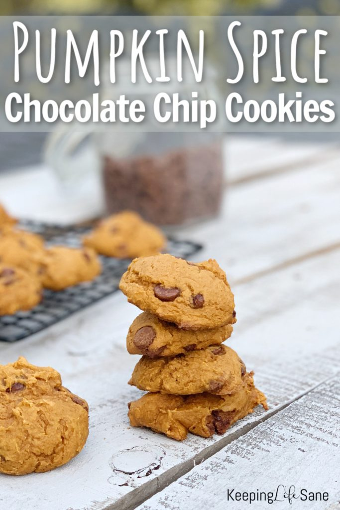 Try these FANTASTIC pumpkin spice chocolate chip cookies. With only 3 ingredients, they're super easy to make. They won't last long.