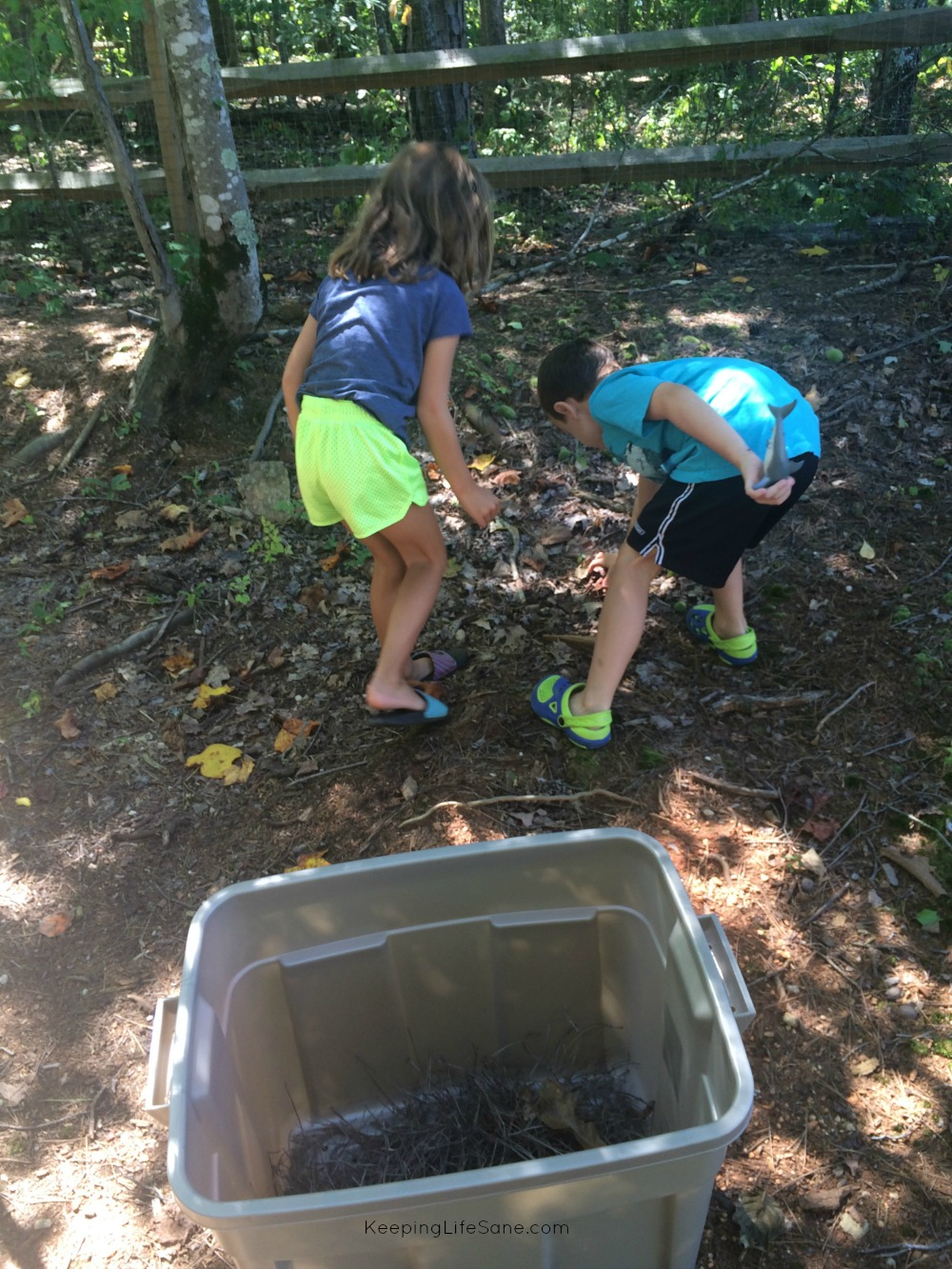 A girl and a boy in a wooded area picking up dried leaves and sticks.