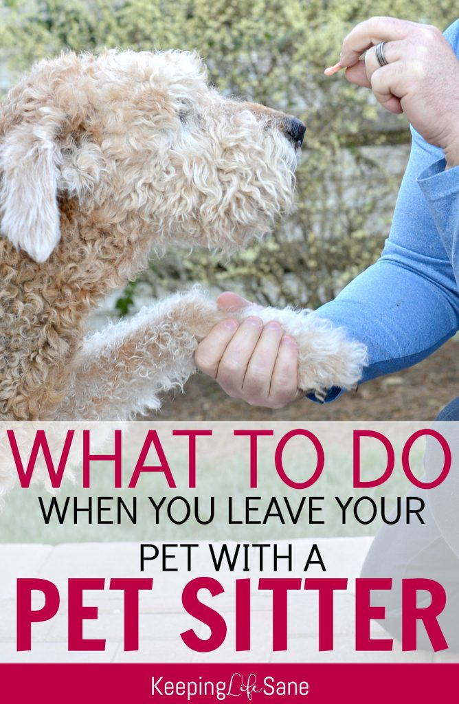 Do you know what your pet sitter needs to have when you go away? Here's a GREAT pet sitter checklist with a FREE printable to make things easier!