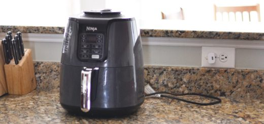 "You may be wondering, ""Should I buy an air fryer?"" The answer is yes! Read all about them here and get an easy recipe to start with."