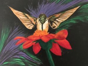 acupunture hummingbird