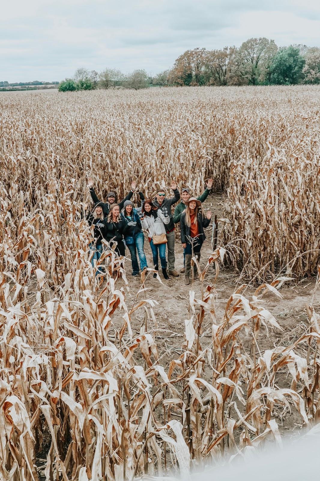 Friends in the cornfield at Schuster's Farm in Deerfield, Wisconsin