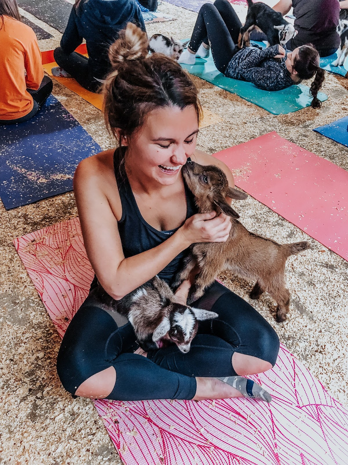 Tampa blogger at Grady Goat Farm in Tampa, Florida taking a goat yoga class