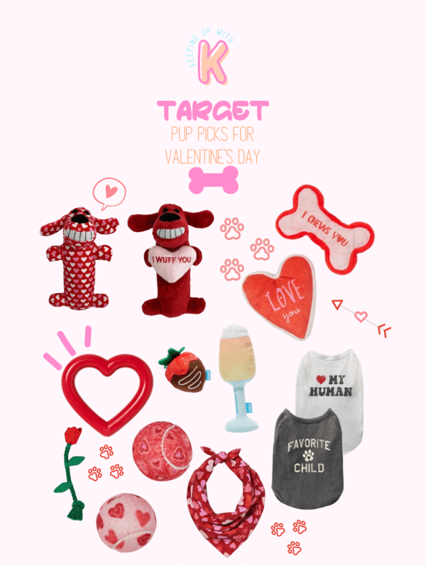 VALENTINE'S DAY PICKS FOR YOUR PUP FOUND AT TARGET