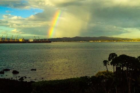 Holsbys rainbow, whangarei
