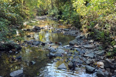 One of Irwin's tributaries is Stewart Creek. Here, a Stewart tributary might be mistaken for a mountain brook. Photo: Nancy Pierce