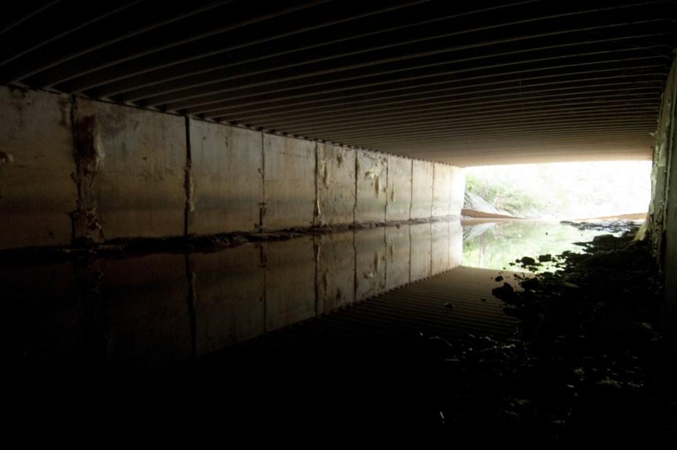 As late as 2007, Little Sugar Creek near Kings Drive was covered in concrete. Photo: Nancy Pierce