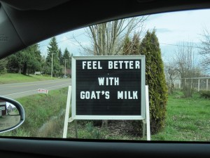 While it might make you feel better to feed your baby goat milk, it won't make your baby feel any better, and could make them sick...