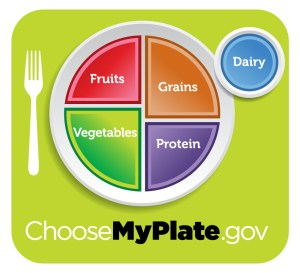 Follow the My Plate guidelines to make sure your kids are eating healthy foods.