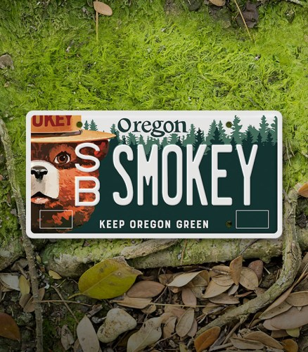 Smokey_Bear_License_Plate_Thumb