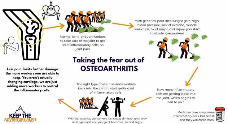 hope for arthritis by understanding osteoarthritis