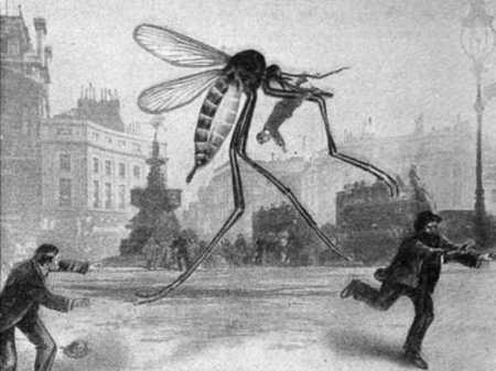 drawing-of-giant-mosquito
